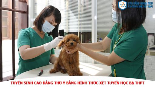 cao đẳng thú y