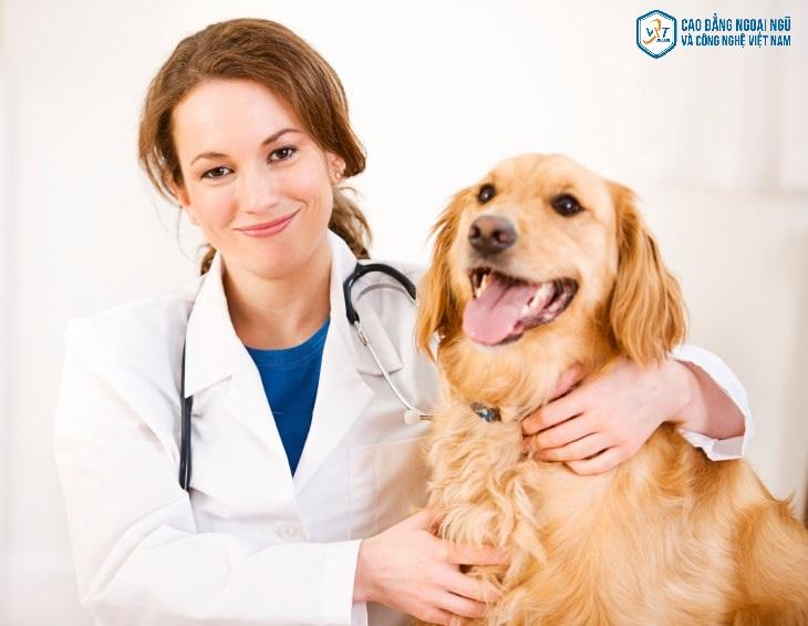 Trung cấp thú y mang lại lợi ích gì? Nên học trung cấp thú y ở đâu uy tín ?